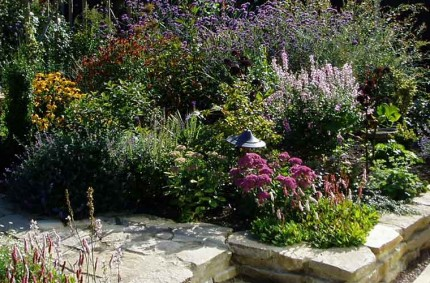 Suburban Back Garden